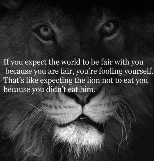 If-You-Expect-The-World-To-Be-Fair